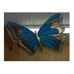 Large butterfly 2_1
